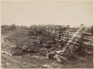 Dead Confederates